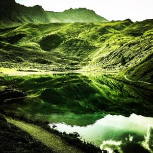 arosa_green